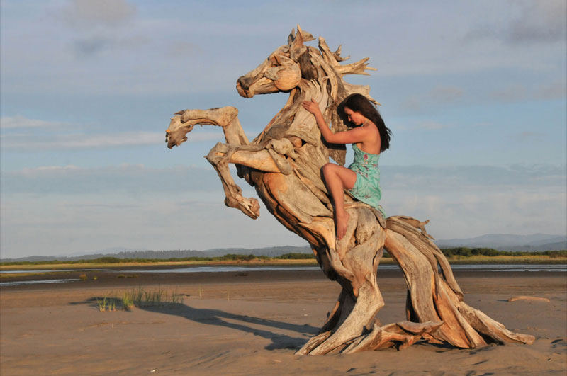 driftwood-sculptures-by-jeffro-uitto-knock-on-wood-11